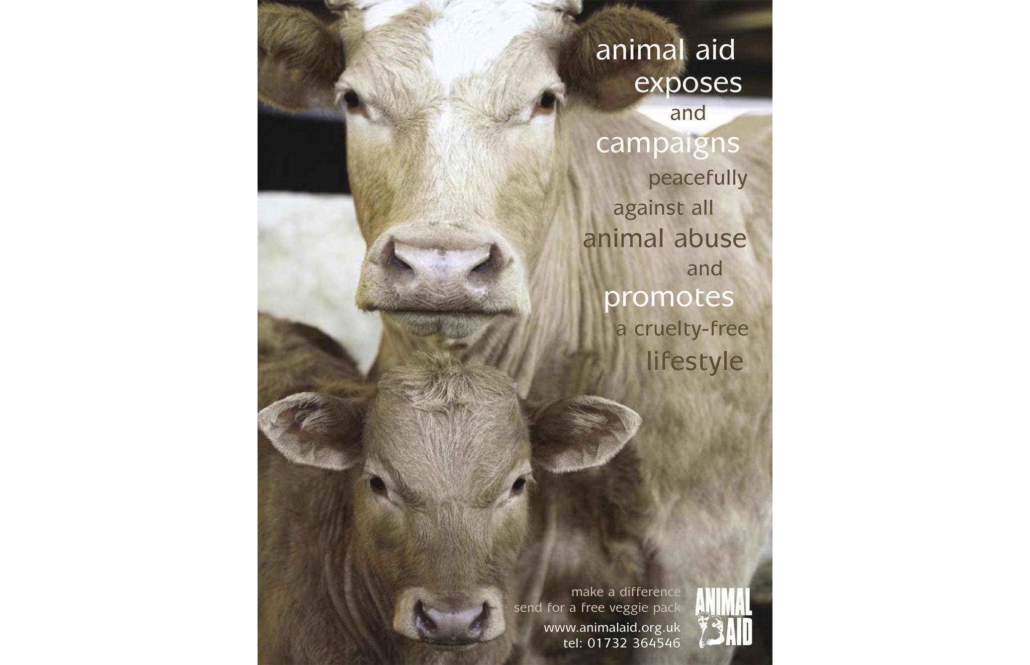 Animal Aid.indd